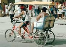 Transport (11).jpg