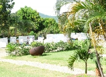 Trinidad Demo (24).JPG